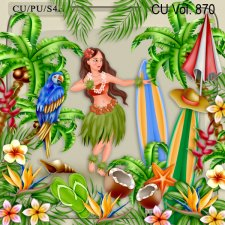 CU Vol 870 Hawaii by Lemur Designs