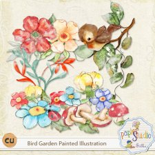 Bird Garden Painted Illustrations EXCLUSIVE by PapierStudio Silke