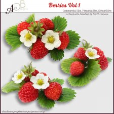 Foliage Elements Berries 1 by ADB Designs