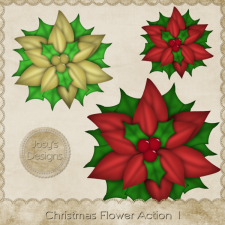 Christmas Flower Action 1