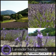 Exclusive Lavendar Backgrounds CU4CU by Happy Scrap Arts