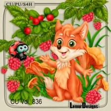 CU Vol 836 Fox by Lemur Designs