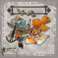 VOL 64 seashell elements byMurielle