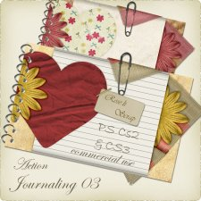 Action - Journaling III by Rose.li