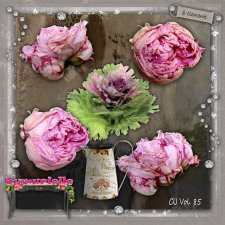 Vol 85 peonies EXCLUSIVE byMurielle