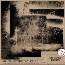 Brush Genius Volume Two by Mad Genius Designs