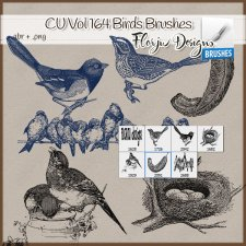 CU vol 164 Birds Brushes and PNG by Florju Designs