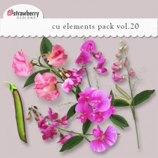Pink Flowers Element Mix Vol 20 by Strawberry Designs