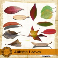 Autumn Leaves Elements by Happy Scrap Art