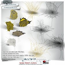 Spider Webs 01-actions by Eirene Designs