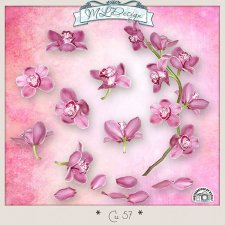 CU set 57 Flowers Orchid by MLDesigns