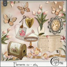 Elements CU - 264 Shabby interior by Cajoline-Scrap