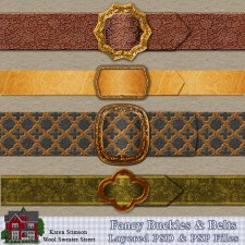 Fancy Buckles & Belts by Karen Stimson