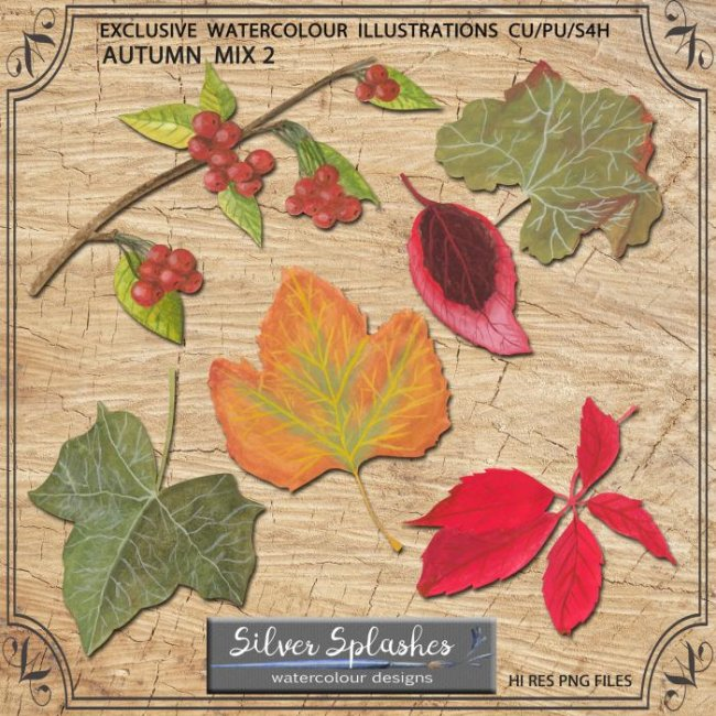 EXCLUSIVE Autumn Mix 2 Watercolours by Silver Splashes