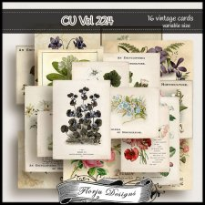 CU vol 224 Botanical cards by Florju Designs