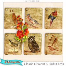 Classic Elements 6 Birds Cards by Kastagnette