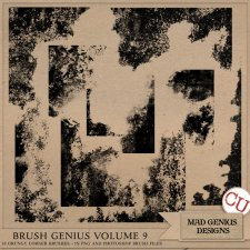 Brush Genius Volume Nine by Mad Genius Designs