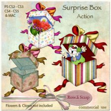 Action - Surprise Box by Rose.li