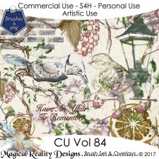 Brush Set And Overlays - CU Vol 85 Bundle by MagicalReality Designs
