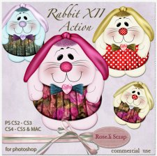 Action - Rabbit XII by Rose.li