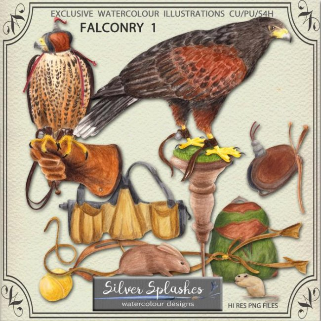 EXCLUSIVE Falconry 1 Watercolour by Silver Splashes