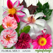 Floral Mix 3 by Reginafalango