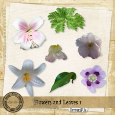 Flowers and Leaves 1 elements by Happy Scrap Art