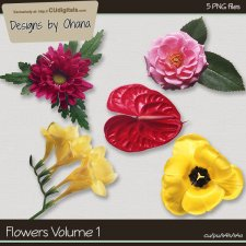 Flowers Vol 1 - EXCLUSIVE Designs by Ohana