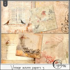 Vintage autumn papers 3 by Cajoline-Scrap