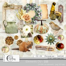 Elements CU - 215 by Cajoline-Scrap
