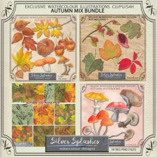 EXCLUSIVE Autumn Mix Bundle by Silver Splashes