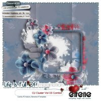 Cluster Vol 03 Combo:Actions, Templates, Brush&Embellishments