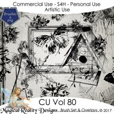 Brush Set And Overlays - CU Vol 80 by MagicalReality Designs
