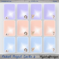 Pocket Project Cards 6