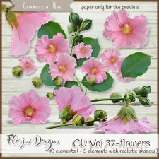 CU vol 37 Flowers by Florju Designs