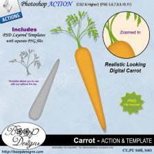 Carrot by Boop Design