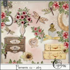 Elements CU - 263 Shabby interior by Cajoline-Scrap