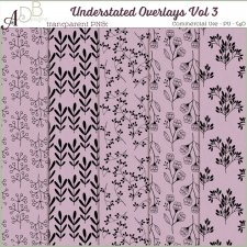 Understated Overlays Vol 3 by ADB Designs