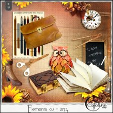 Elements CU - 274 Autumn mix 7 by Cajoline-Scrap
