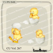 Animals Chick 4 by Lemur Designs
