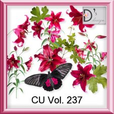 Vol. 237 Elements by Doudou Design