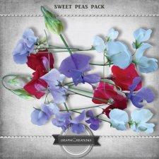 Sweet peas flowers pack by Graphic Creations
