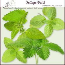 Foliage Elements Vol. 02 by ADB Designs