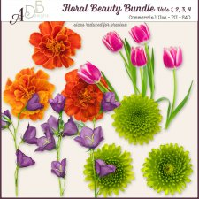 Floral Beauties Elements Vol. 01 - 04 Bundle by ADB Designs