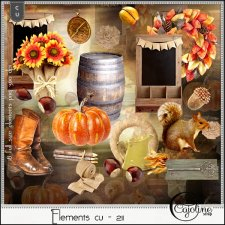Elements CU - 211 Fall Autumn by Cajoline-Scrap