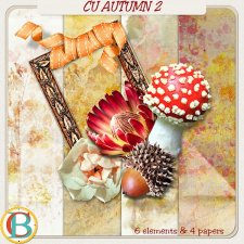 Autumn Bundle by Benthaicreations