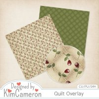 Quilt Overlay by Kim Cameron