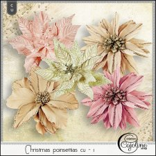Christmas poinsettias CU - 1 by Cajoline-Scrap