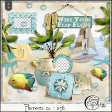 Elements CU - 258 at the beach by Cajoline-Scrap