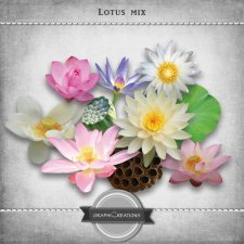 Lotus mix by Graphic Creations